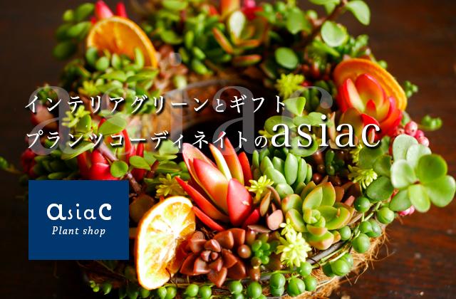 旅する雑貨 Asiac